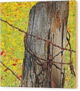 Ranch Wildflowers And Fence 2am-110532 Wood Print