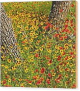 Ranch Wildflowers And Trees 2am-110522 Wood Print
