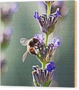 Random Lavender Sampling Wood Print