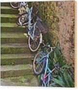 Range Of Bikes Wood Print