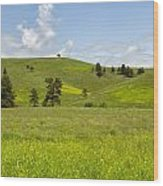 Rangelands Of Custer State Park Wood Print