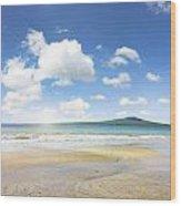 Rangitoto Island Wood Print