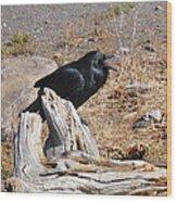 Ranting And Raven Wood Print