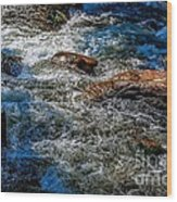 Rapids On The Gore Wood Print