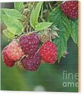Rasberries Wood Print