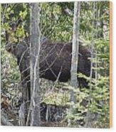 Raspberry Moose Wood Print