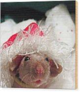Rat Elf Wood Print