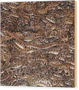 Rattle Snake Round-up Wood Print