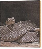 Rattlesnake Wood Print
