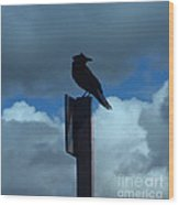 Raven Checking The Wind Wood Print