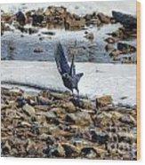Raven Departs Wood Print