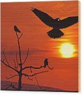Raven Maniac Wood Print