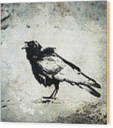 Raven On Blue Wood Print