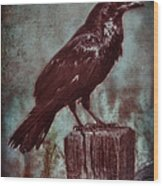 Raven Perched On A Post Wood Print