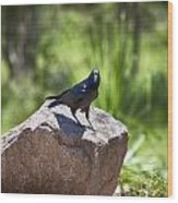 Raven Rock Wood Print