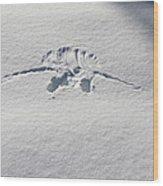 Raven Snow Angel Wood Print