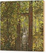 Ravine Gardens State Park In Palatka Fl Wood Print