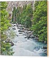 ravine in Verney Dora Wood Print