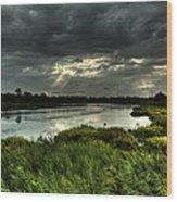 Lake Worth Sunlight Wood Print