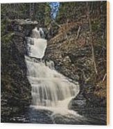 Raymondskill Falls Wood Print