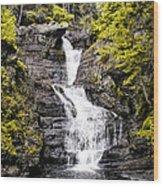 Raymondskill Falls In Milford Pa Wood Print