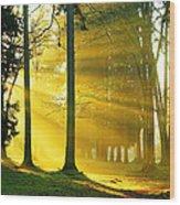 Rays Of Sun Wood Print
