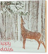 Reach For It Happy Holidays Wood Print by Karol Livote