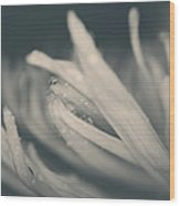 Reach Out And I'll Be There Wood Print