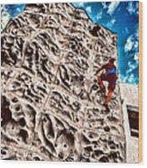 Reaching A Climbmax Wood Print