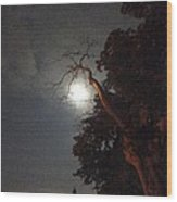 Reaching For The Moon Wood Print by Guy Ricketts