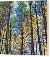 Reaching For The Sky Wood Print