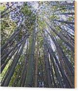 Reaching To The Sky Wood Print