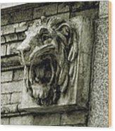 Reading Lion Wood Print
