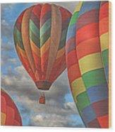 Readington Balloon Fest Media Launch 13 Wood Print