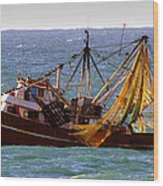 Ready For Shrimp Wood Print by Robert Bascelli