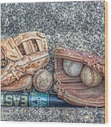 Ready To Play Ball Wood Print by Randy Steele