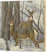 Ready - Whitetail Deer Wood Print by Paul Krapf