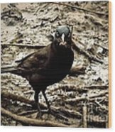 Really It Is Mine- Says The Grackle Bird Wood Print