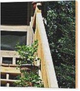 Rear Entrance Wood Print