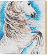 Rearing Andalusian Horse Wood Print