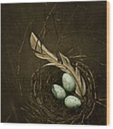 Rebirth Wood Print by Amy Weiss