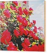 Recesky - Bright Roses Wood Print