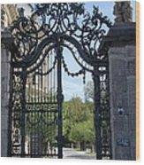 Recidence Garden Gate - Wuerzburg Wood Print