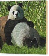 Reclining Panda Wood Print