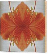 Red Amaryllis Flower Wood Print