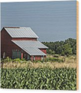 Red Amish Barn And Corn Fields Wood Print
