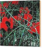 Red An Black Poppies 1 Wood Print