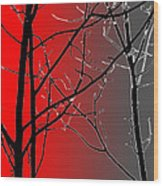 Red And Gray Wood Print
