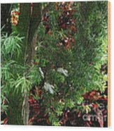 Red And Green Foliage Wood Print