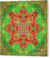 Red And Green Sun Mandala Wood Print